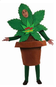 Keep Off the Grass Adult Costume
