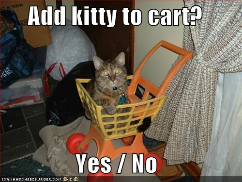no shopping cat