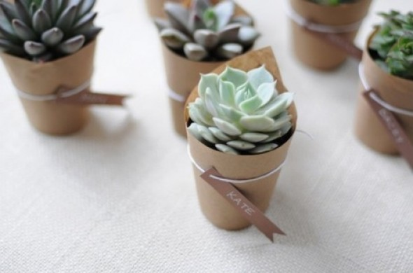 What Could Be More Sweet And Thoughtful Than Individually Potted Plants It S Not Like You Re Ever Actually Gonna Get Around To Making Your Own Homemade