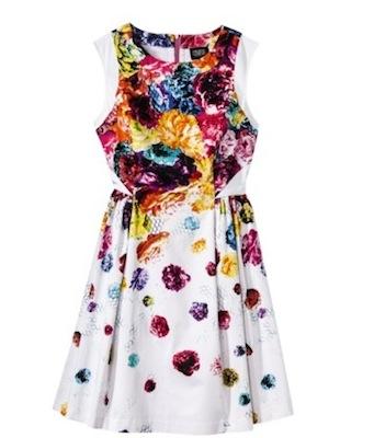 Prabal Gurung for Target Dress with Full SKirt in Floral Crush Print