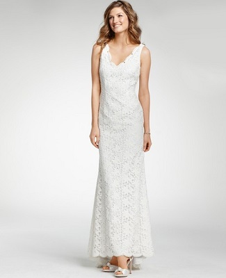 Ann taylor lace sleeveless wedding dress ann taylor lace sleeveless wedding dress 895 junglespirit Images