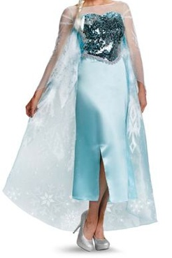 Frozen Elsa Adult Womens Costume