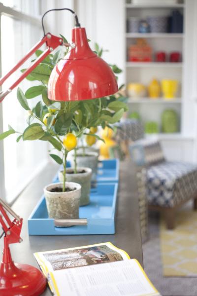 Design Mom for Home Good Shelves 9