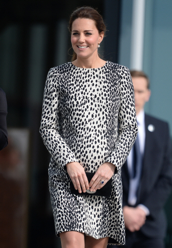 kate middleton dalmatian new