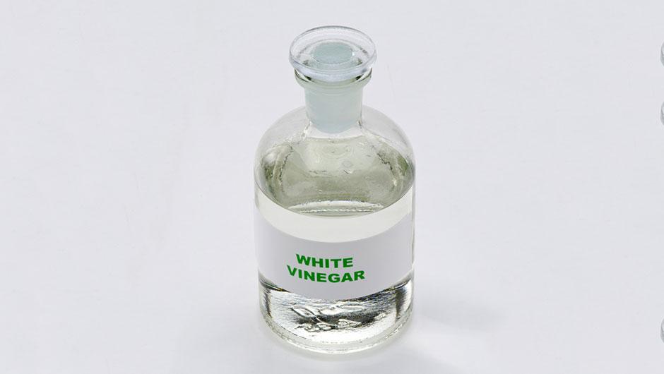 White Vinegar Shefinds