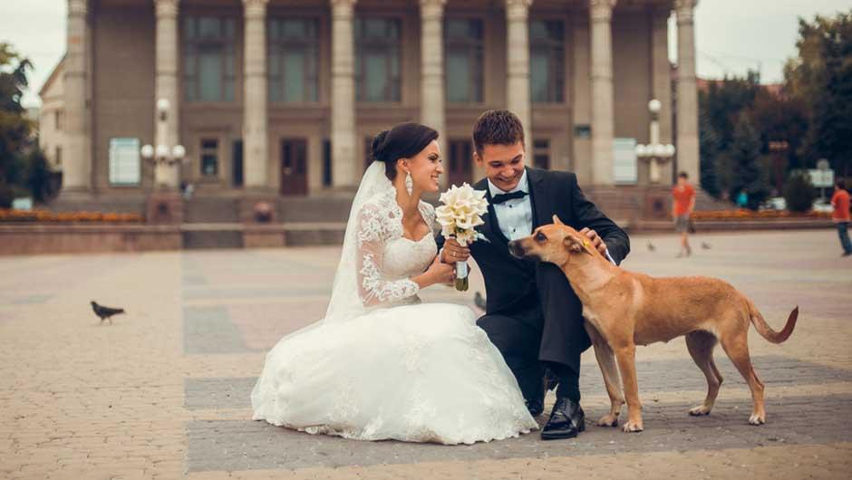 Shefinds Weddings
