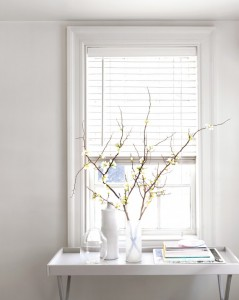 spring-cleaning-blinds-mld110961_vert