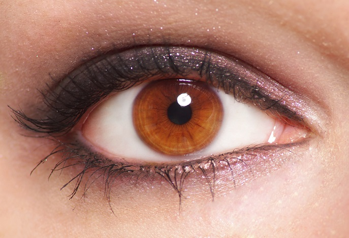 Best Eyeshadow Colors For Brown Eyes Best Eye Shadow Colors For