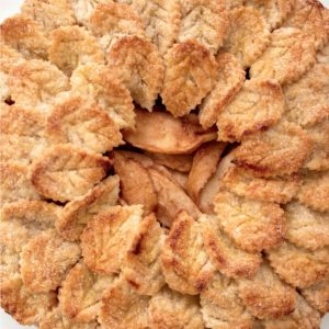 shingle-leaf-brandy-apple-pie_sq