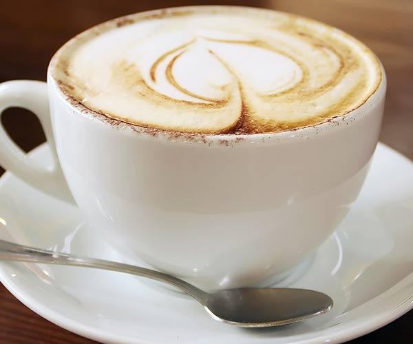 coffee feces bacteria