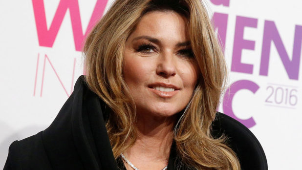 Um, Is It Just Us, Or Does Shania Twain Look SO Different now?