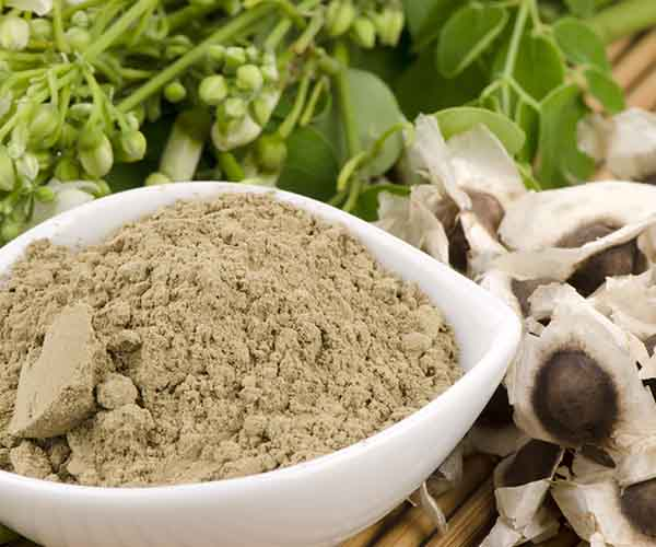 moringa powdered