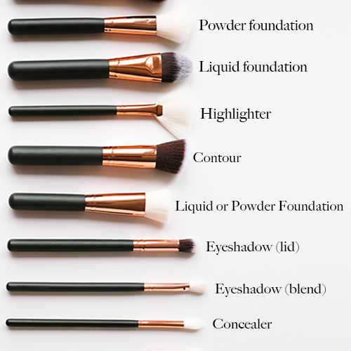 How To Use Each Makeup Brush Properly