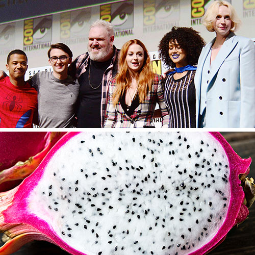 game of thrones dragon fruit