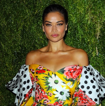 Did Shanina Shaik Really Not Realize That Her Dress Was COMPLETELY Sheer? You Can See EVERYTHING!