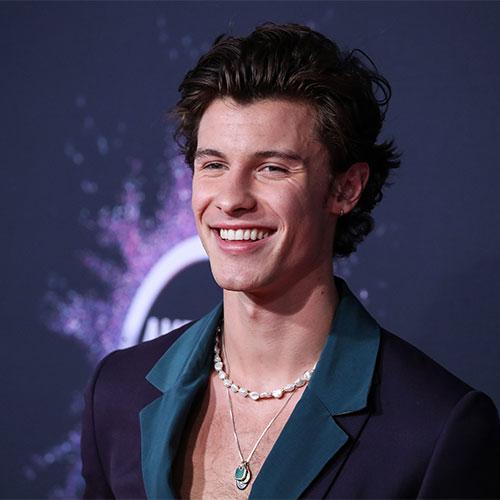 Shawn Mendes 2020 Grammy