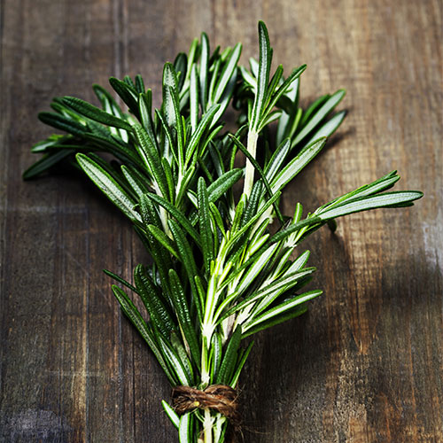 rosemary in soup recipes