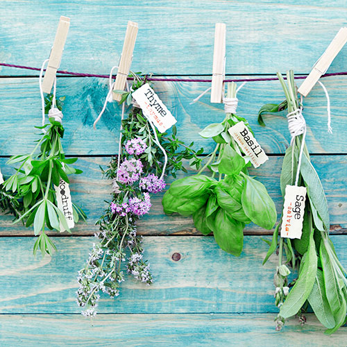 The One Metabolism-Boosting Herb You Should Be Having Every Single Day Over 50