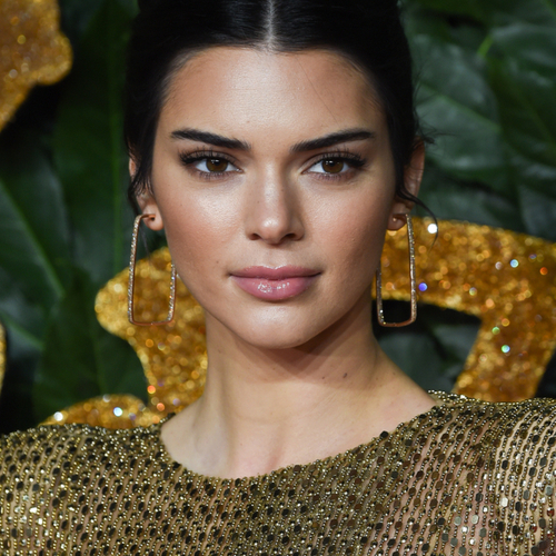 Kendall Jenner Is Wearing Sheer Lingerie In Her Latest Post You Can See Everything!