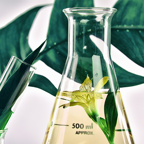fragrance worst skincare face wash ingredients
