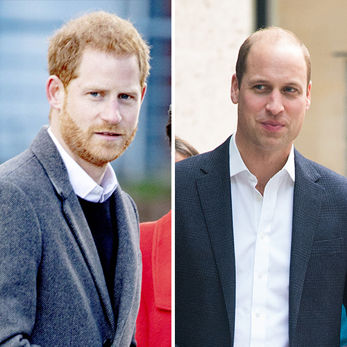 prince harry prince william heartbreaking secret royal family