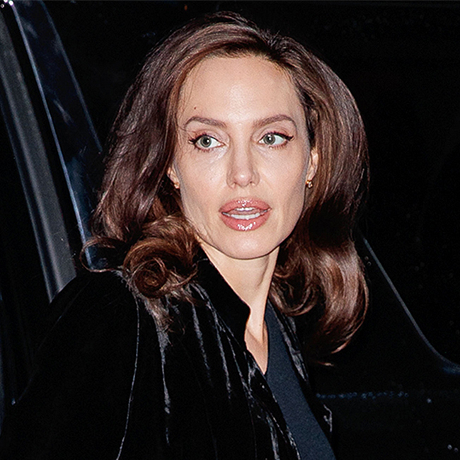 Did Angelina Jolie Really Not Realize That Her Top Was COMPLETELY Sheer?