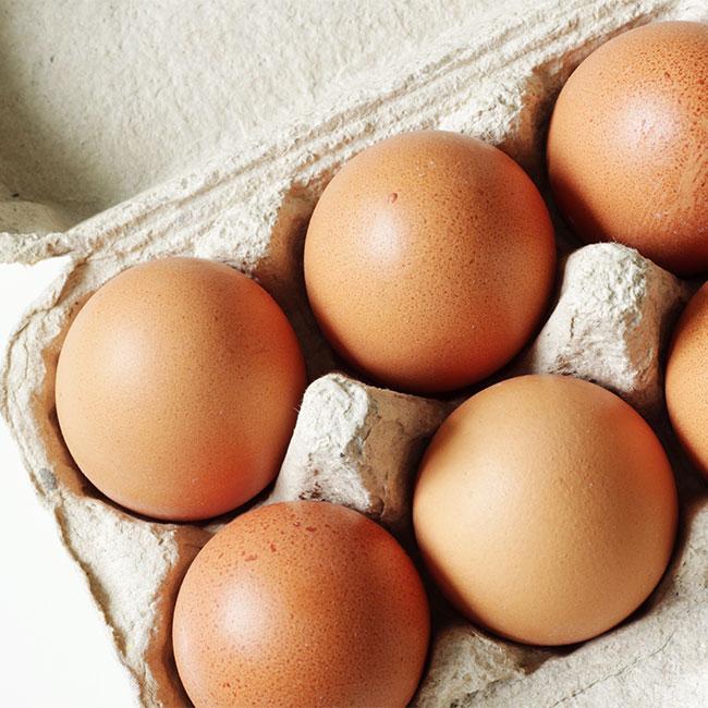 eggs best healthy high protein breakfast