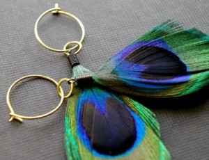 Tobago Peacock Earrings