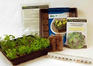 indoor culinary herb garden
